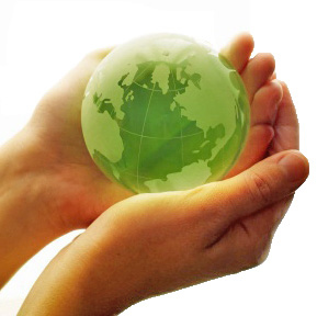 Dr. Kat's List: Top Colleges for Saving the Environment