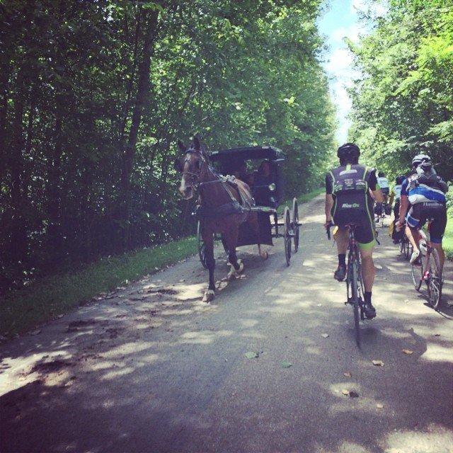 Oberline College Bike Tour