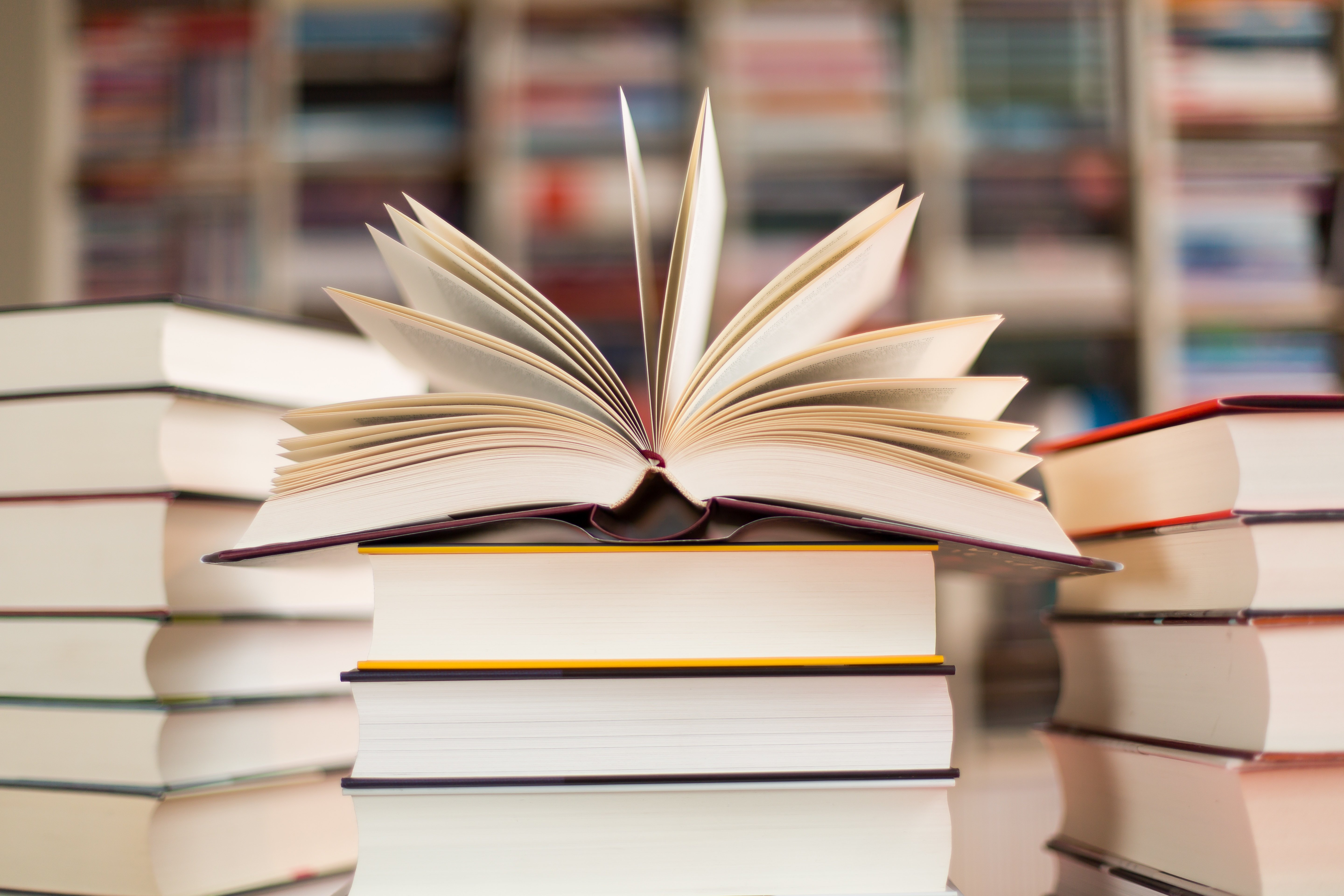 6 College-Curated Books to Read Over Winter Break