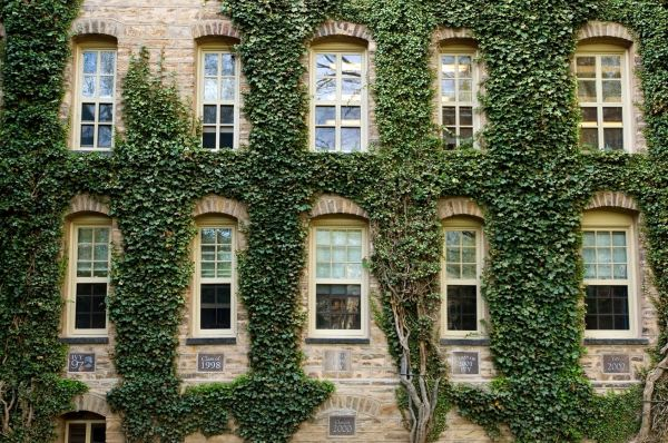 Dr. Kat's List: Five Colleges for Healthy Campus Living