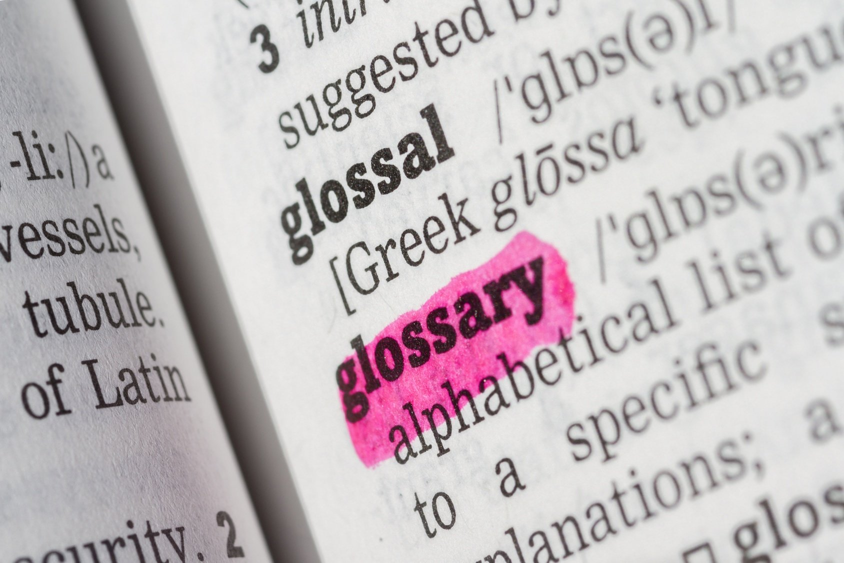 college admissions glossary of terms.jpg