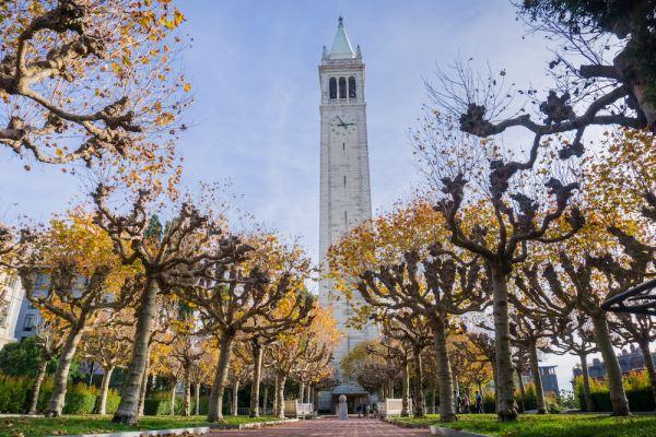 Should I Apply to Graduate School?