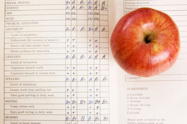 College Admissions Rubric: Developing a Competitive Transcript